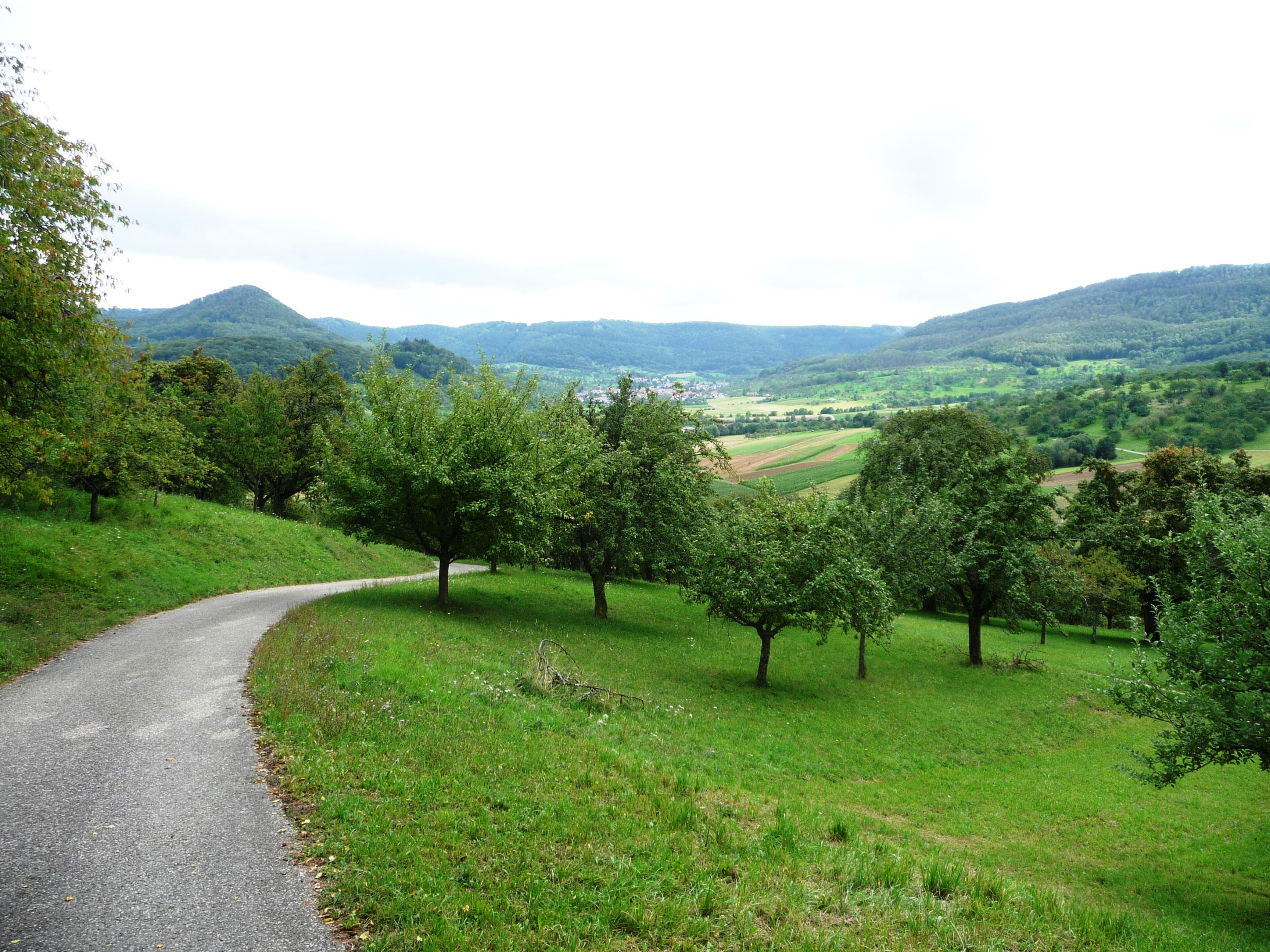 Blick von der Limburg auf Neidlingen.